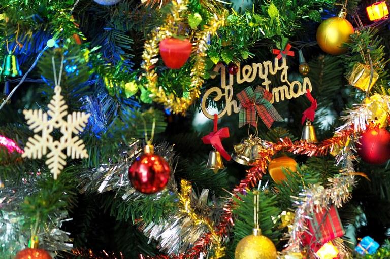 Christmas. pexels-pixabay-264995.jpg